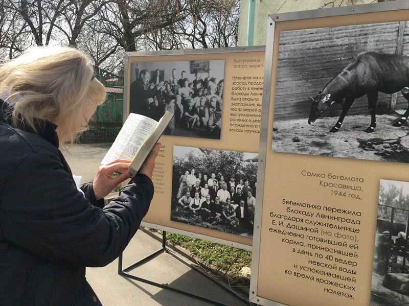 remembering words in the zoo